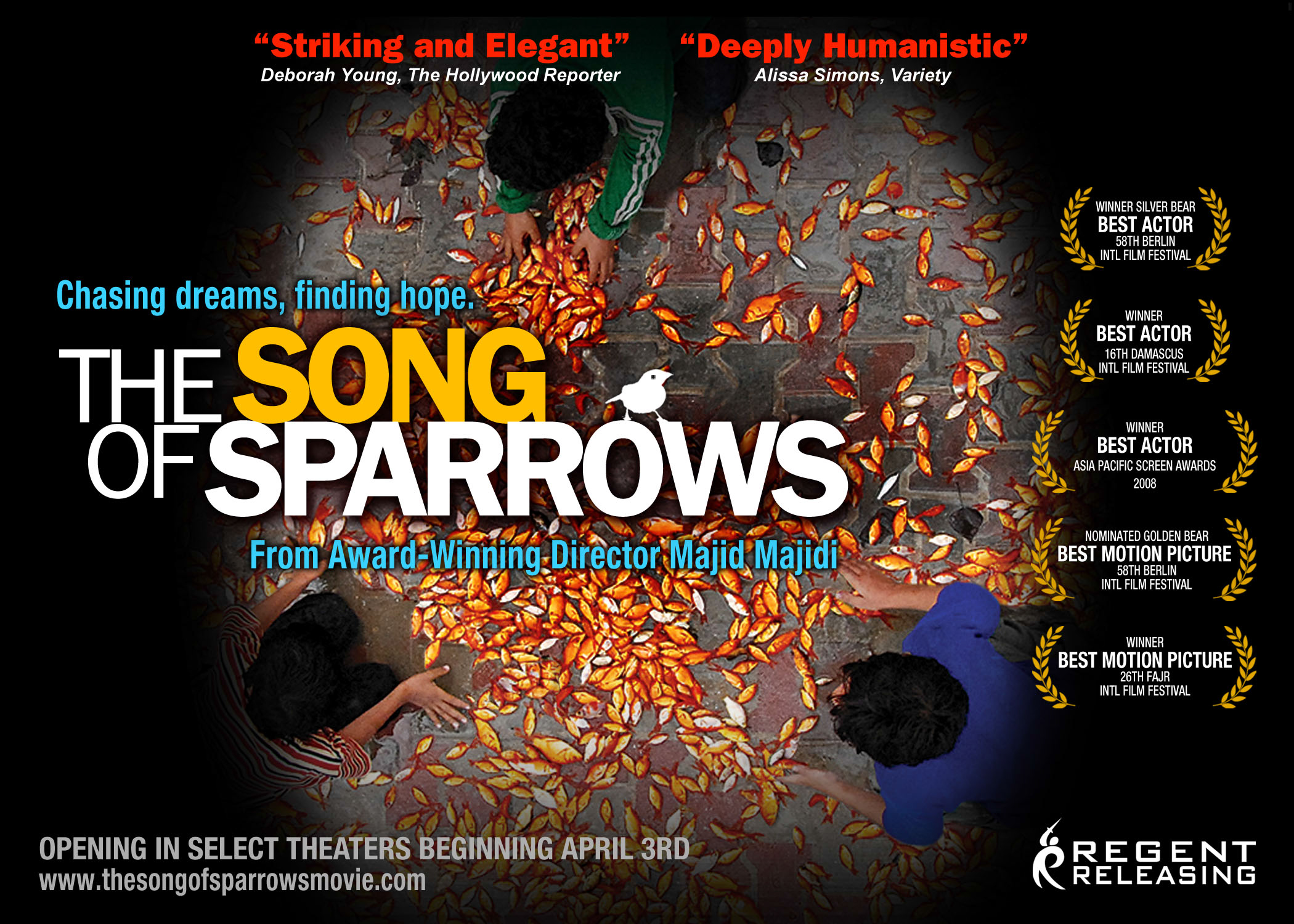 SongOfSparrows
